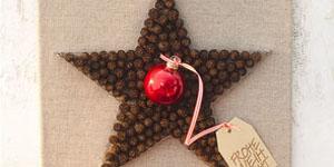 Ideen für Weihnachten: Ein Stern von schlichter Eleganz | Keilrahmen mit Erlenzapfen, Drahtstern und Weihnachtskugel mit Weihnachtsgruß
